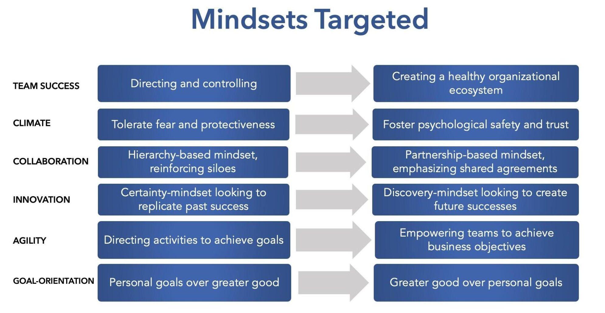 Mindsets Targeted Diagram